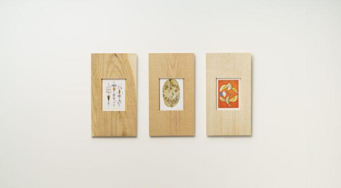 KOJIMAYA | SURPLUS | framed